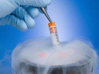 For women undergoing IVF, is fresh or frozen embryo transfer best?