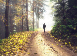 Twenty minutes of contact with nature will lower stress