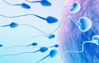 Male Fertility Worsens With Age