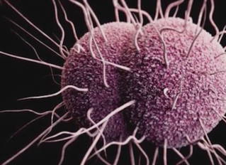 Rates of three STDs in US reach record high