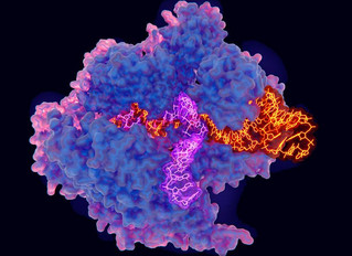 New CRISPR technique called prime editing could make gene editing safer and better