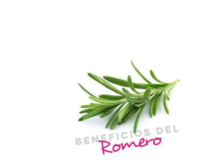 Beneficios de el romero en el cabello