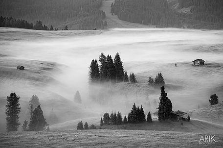 1908-Nebelstimmung -001.jpg