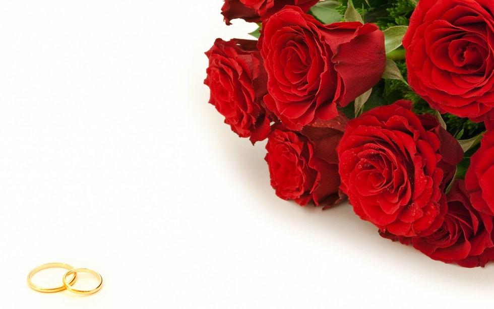 Red Roses 2.0.jpg