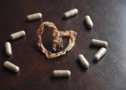Atlanta, Athens, Placenta, Pills, Encapsulation