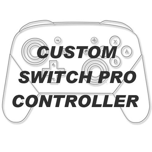 manette switch pro nintendo perso client
