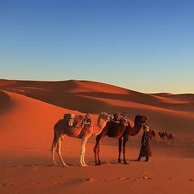 Marrocos_Deserto1.jpg