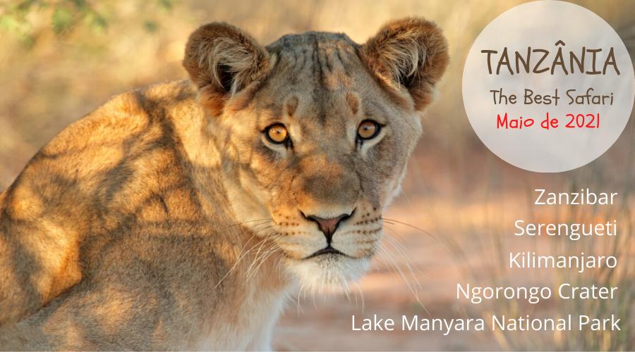 TANZÂNIA_The_best_safari.png