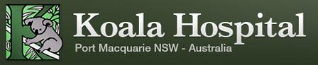 koala hospital.PNG