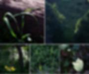 Screen Shot 2020-03-01 at 9.56.10 PM.png