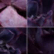 Screen Shot 2020-05-18 at 10.50.25 PM.pn