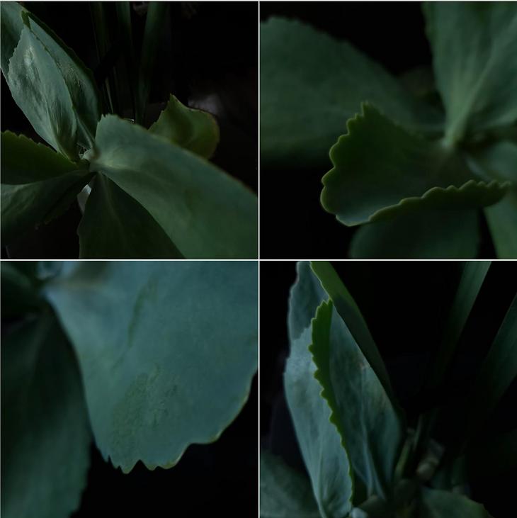 Screen Shot 2020-09-02 at 5.58.14 PM.png