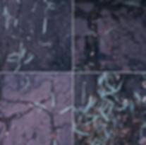 Screen Shot 2020-03-01 at 9.57.45 PM.png