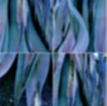 Screen Shot 2020-03-27 at 10.52.40 PM.pn