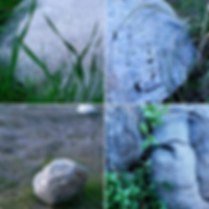 Screen Shot 2020-03-01 at 9.57.17 PM.png