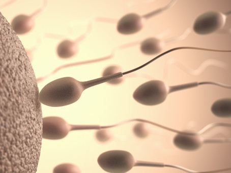 Male Factor Infertility- Have you tested DNA fragmentation?