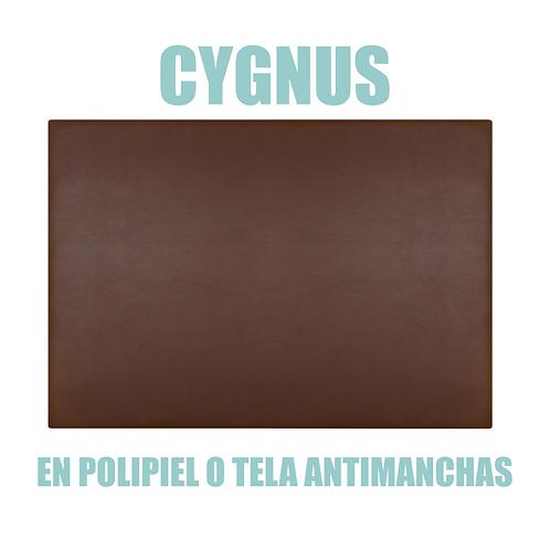 Cabecero CYGNUS