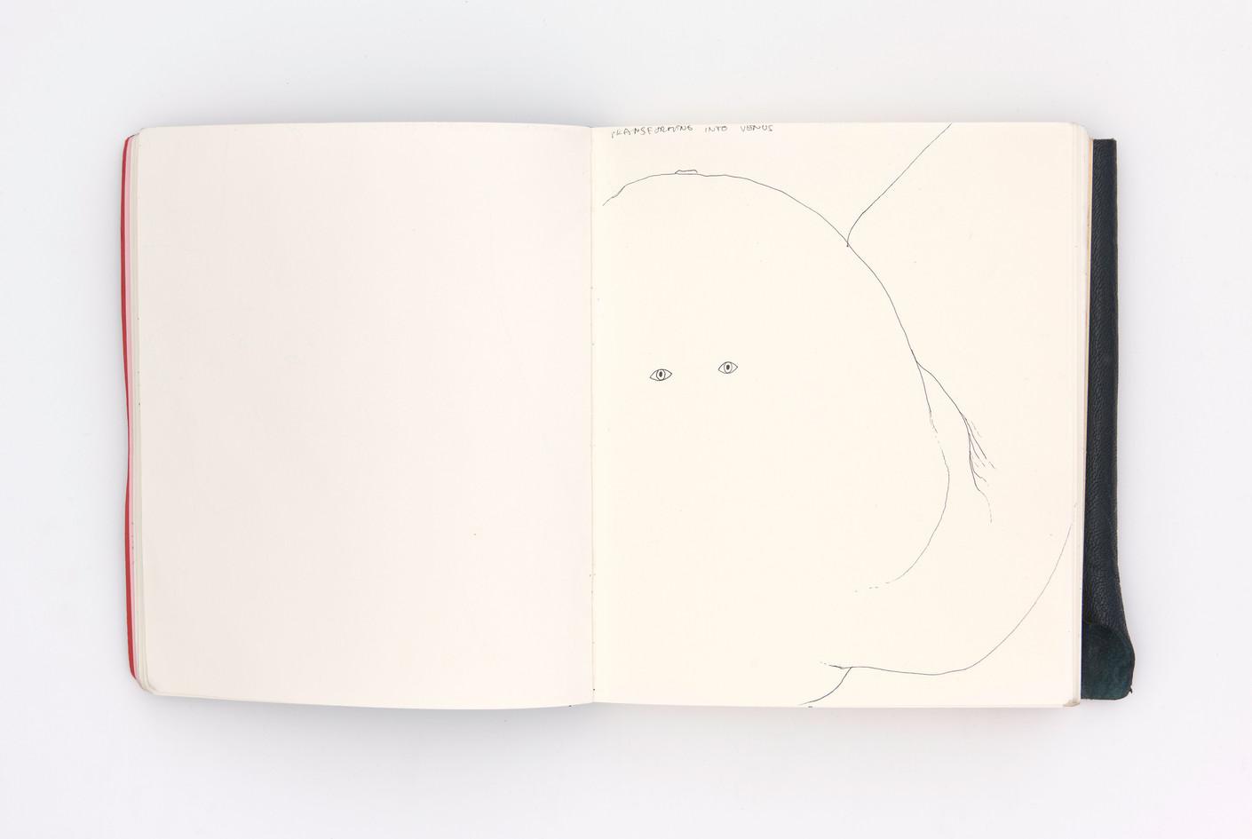 LargerBook-009.jpg