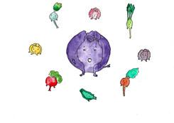 Cabbage_13_200.jpg