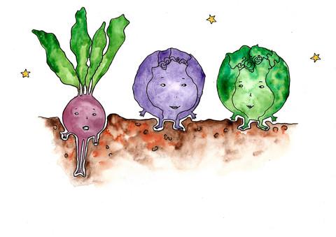 Cabbage_15_200.jpg