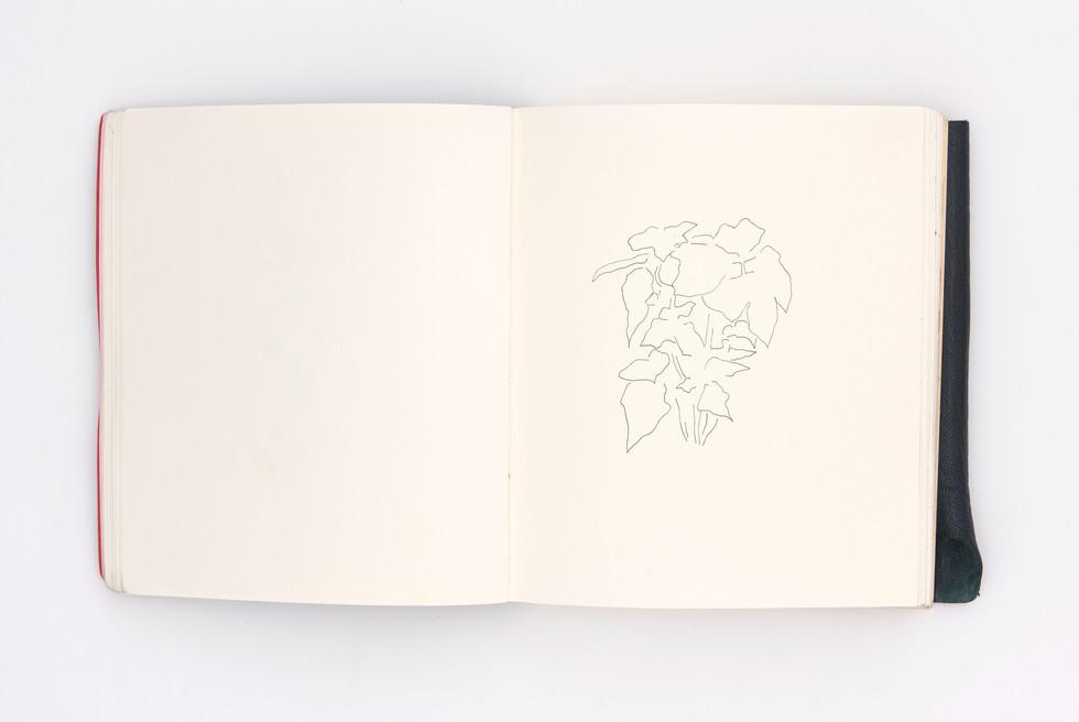 LargerBook-020.jpg