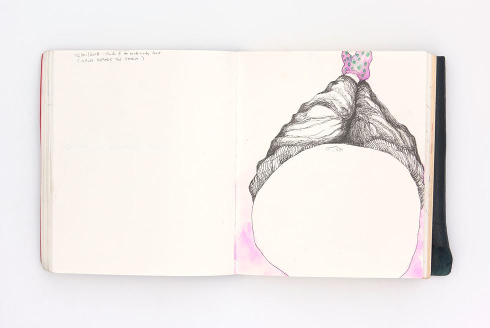 LargerBook-044.jpg