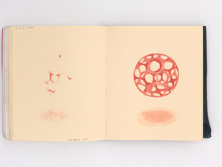 LargerBook-078.jpg