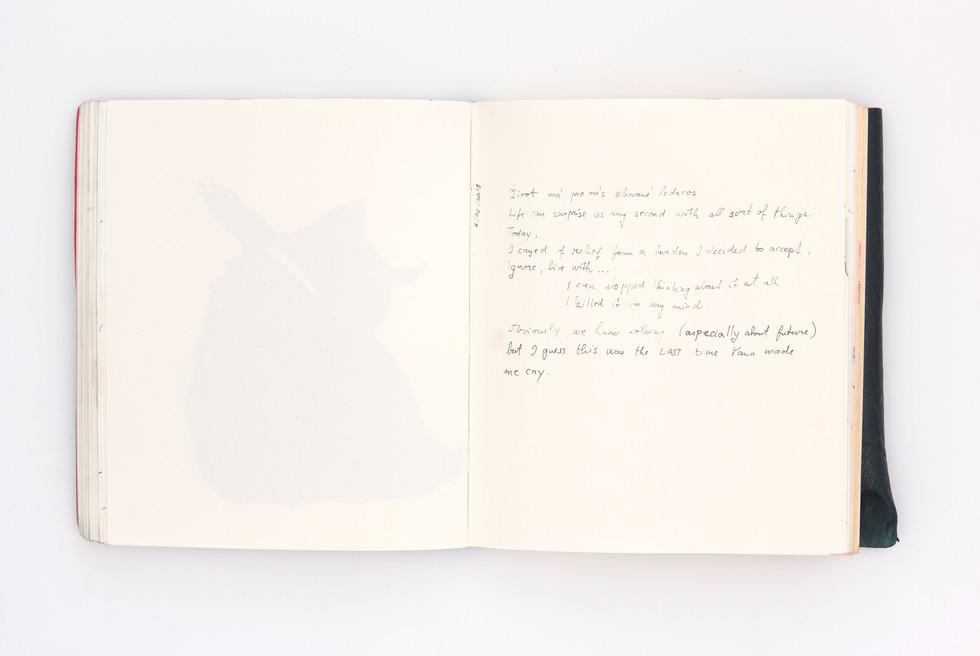 LargerBook-049.jpg