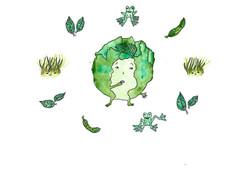 Cabbage_7_200.jpg