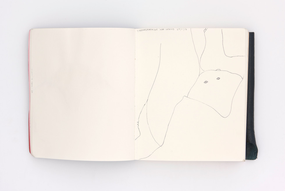 LargerBook-008.jpg