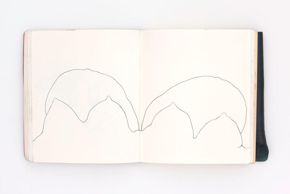 LargerBook-046.jpg