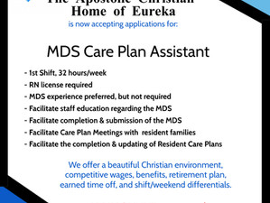 MDS Care Plan Assistant