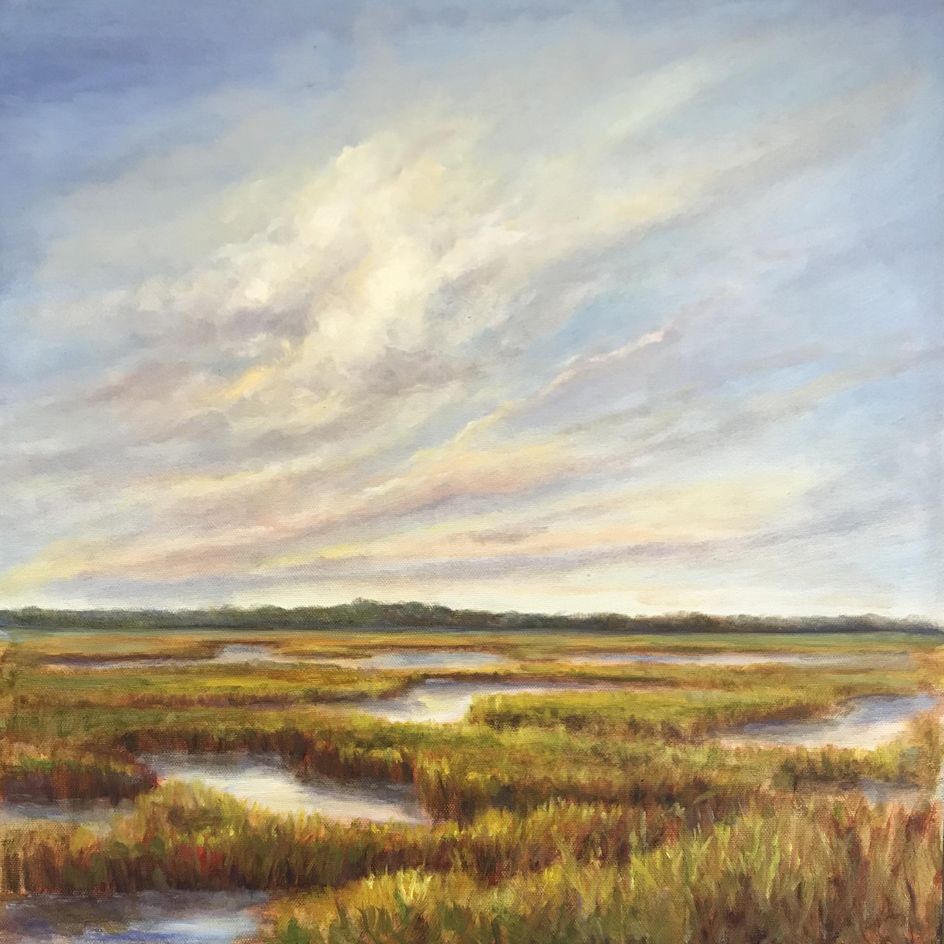 Tilghman Marsh
