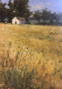 Oak Creek Meadow