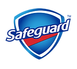 safeguard-logo-300.png