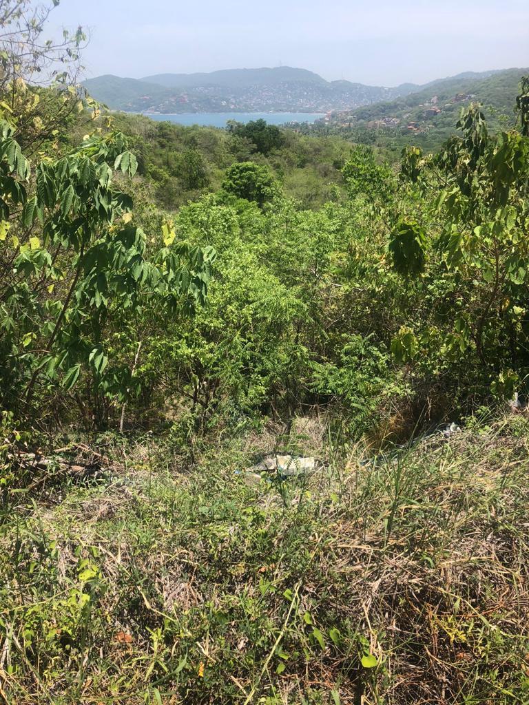 Adquiere este excelente terreno de 527.49 M2, ubicado a un costado de la CARRETERA ESCÉNICA PLAYA LA ROPA, Zihuatanejo, Guerrero, México: ESPECTACULAR PANORÁMICA CON VISTA AL MAR, ¡¡¡PROYECTO DE URBANIZACIÓN EN AVANCE!!! ____________________  Acquire this excellent land lot of 527.49 M2, located next to the PLAYA LA ROPA SCENIC ROAD, Zihuatanejo, Guerrero, Mexico: SPECTACULAR PANORAMIC WITH SEA VIEW, URBANIZATION PROJECT IN PROGRESS!!!
