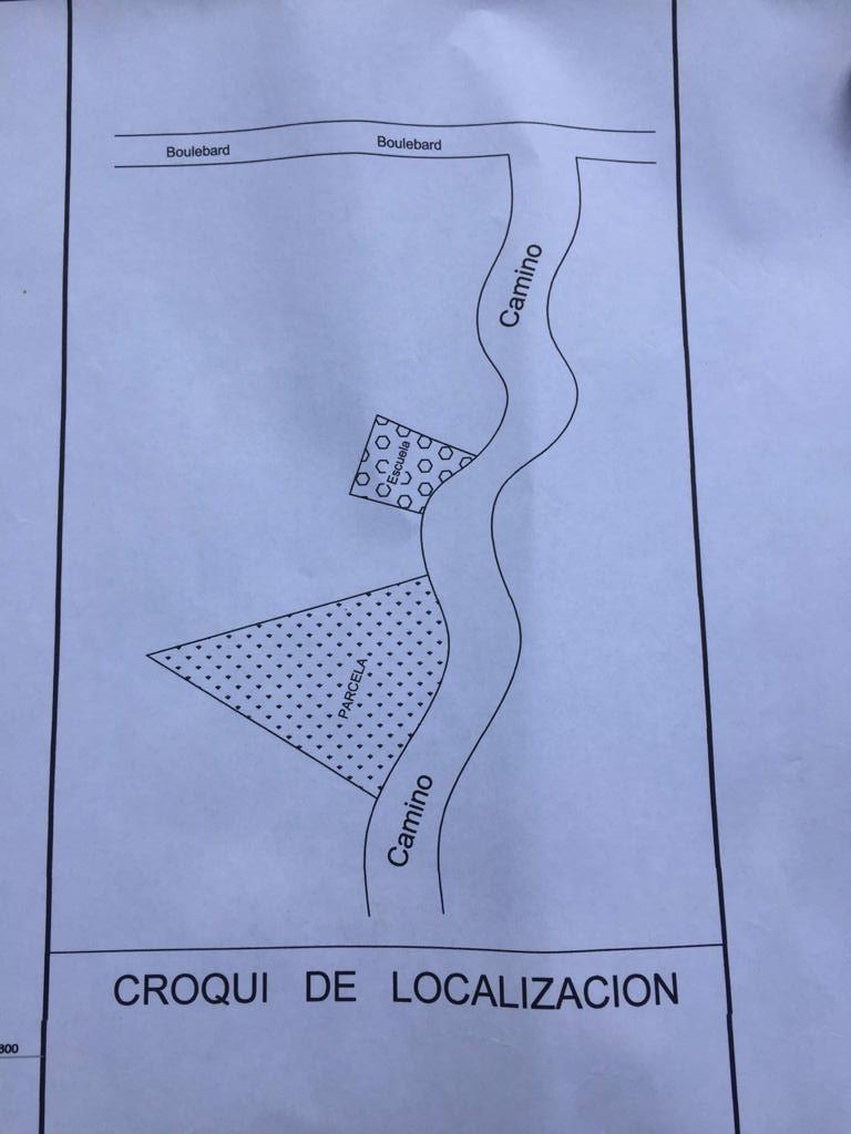 Terreno de 8 hectáreas ubicado en colonia el Riscalillo aproximadamente a 500 mts de Playa Riscalillo…  ¡¡¡Excelente para desarrollo turístico, sólo para inversionistas!!! _____________________  Land of 8 hectares located in colonia el riscalillo approximately 500 mts from playa riscalillo…  Excellent for tourism development, only for investors!