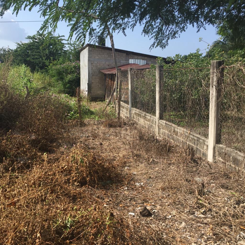 Terreno Ubicado en la comunidad de Los Achotes en el estado de Guerrero.  - TERRENO DE 34 M X 37 M (1,258 M2) - A 15 minutos de Playa Barra de Potosí - A 20 minutos de Zihuatanejo, Gro. - A 25 minutos de Ixtapa, Gro. - Acceso a todos los Servicios Públicos. ____________________  Land Lot Located in the community of Los Achotes in the state of Guerrero.  - LAND OF 34 M X 37 M (1,258 M2) - 15 minutes from Barra de Potosí Beach - 20 minutes from Zihuatanejo, Gro. - 25 minutes from Ixtapa, Gro. - Access to all Public Services.
