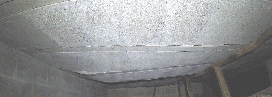 Inspection vide-sanitaire.JPG
