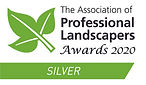 APL Awards 2020 Category Logos - Silver.