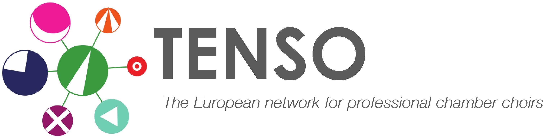 Tenso network logo