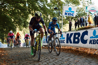 Stephens flies to sixth at Gent-Wevelgem