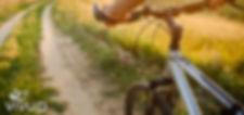 Cycle%20to%20Work%20Vivup_edited.jpg