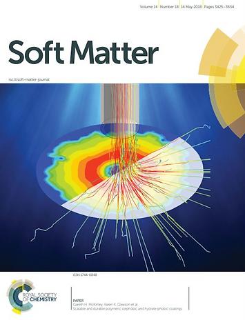 soft matter polymeric icephobic coatings