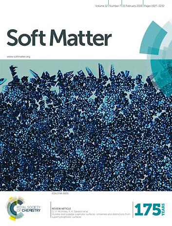 soft matter review article.tif
