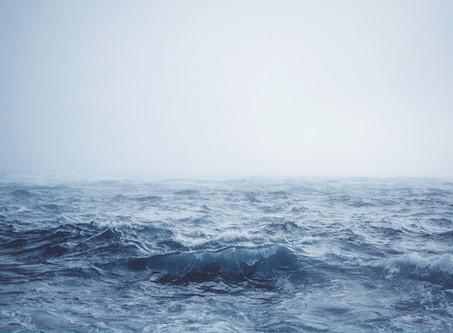 Un océan de mots comme chaque année à Saint Malo