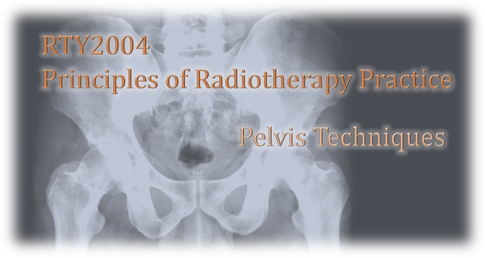RTY2004 – Principles of Radiation Therapy Practice – Pelvis