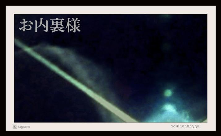 2016.10.18.13.30. お内裏様6.png