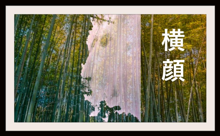 2017.01.27.10.38 髭の横顔6.png