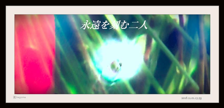 2016.11.01.13.59永遠を紡ぐ二人4.png